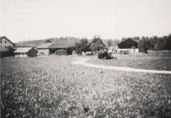 Höfe Im Unteren Dorf